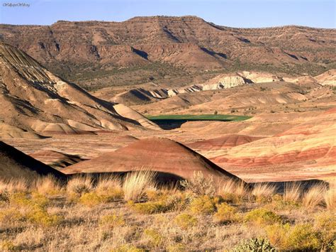 john day fossil beds nature painted hills john day fossil beds national