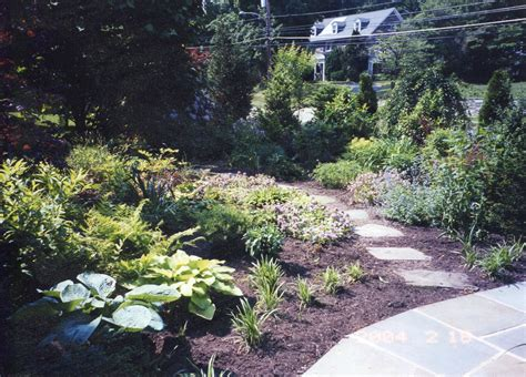 Backyard Landscaping Ideas For Privacy Privacy Fencing And Shrub Borders For Philadelphia Homes