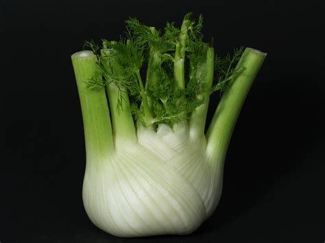 Kemenyan Madu 555 Kotak adas sebagai obat sayuran dan bumbu oleh indriati see