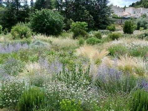 plantas para jardin mediterraneo plantas para clima mediterr 225 neo y jardines naturalistas