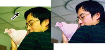 photoshop remove color fix color casts in photoshop elements