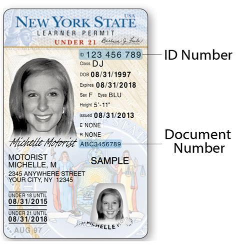 Document Number On New York License