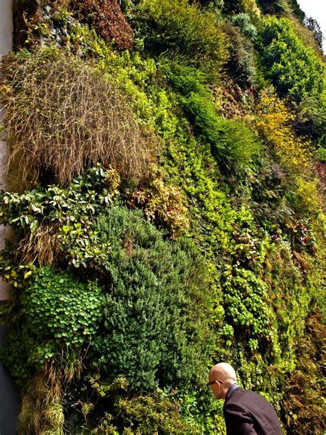 Vertical Garden Madrid Vertical Garden By Botanist Blanc At Caixa