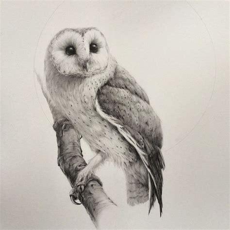 Owl Drawings Barn Owls And Barns On Pinterest Barn Owl Drawing