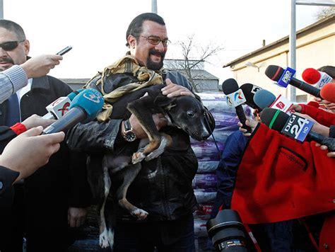 G U C C I Stevan 11cg299 steven seagal adopta un perro callejero en ruman 237 a taringa