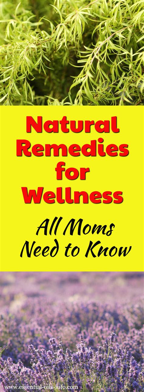 i want to know all natural herbs and vitamin that inhibit 5ar natural remedies for wellness all moms need to know