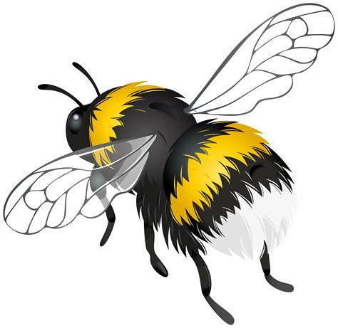 flying bee png clipart best web clipart