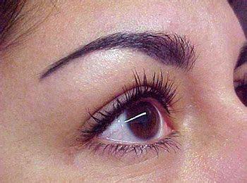 tattoo eyeliner waterline 58 best eyeliner tattoo images on pinterest eyeliner