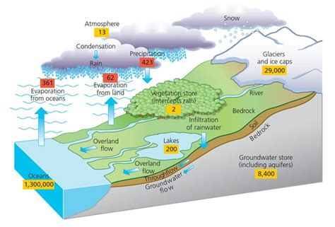 terrain and landscape study for diagram of hydrological cycle awesome earth space