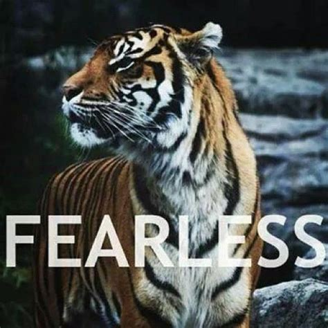 fearless pictures   images  facebook tumblr pinterest  twitter
