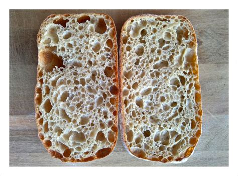 100 hydration rye sourdough starter 222 best images about my sourdough on