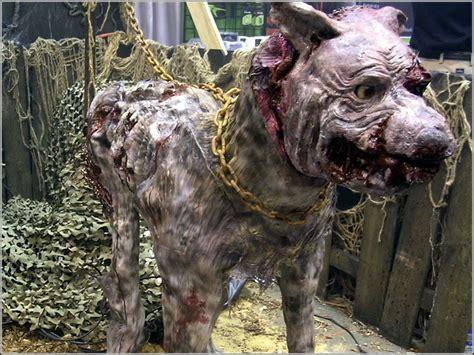 haunted dog house rabid dog halloween pinterest haunted houses house and guard dog