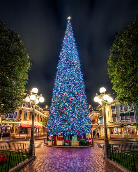 the disney christmas tree according to the disney