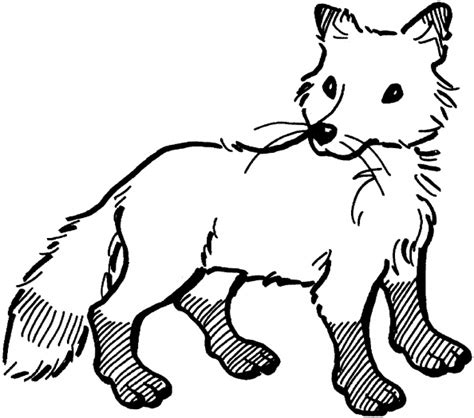 fox coloring book fox coloring book page coloring part 2