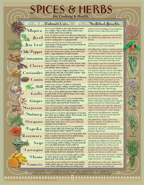 seasoning savvy how to cook with herbs spices and other flavorings books healing herbs and spices chart for the kitchen by