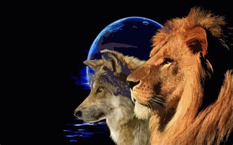 imagenes de leones asesinos leones y lobos s 237 mbolos para la libertad