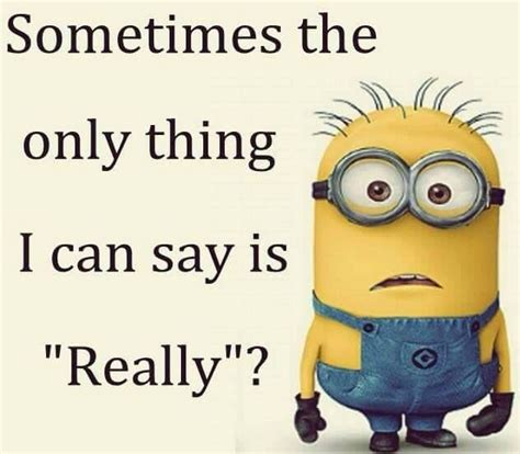Memes Minions - top 40 funniest minions memes quotes and humor