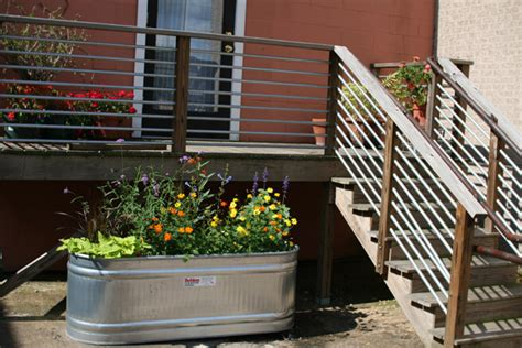 Galvanized Stock Tank Planter by Galvanized Water Trough Planters Nifty Homestead