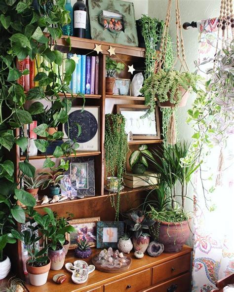 plants that grow in rooms oh my gosh i want a green room like that one day home green rooms room and