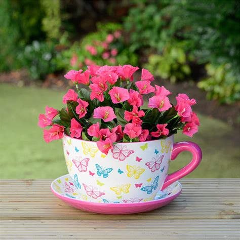 Tea Cup Planter by B M