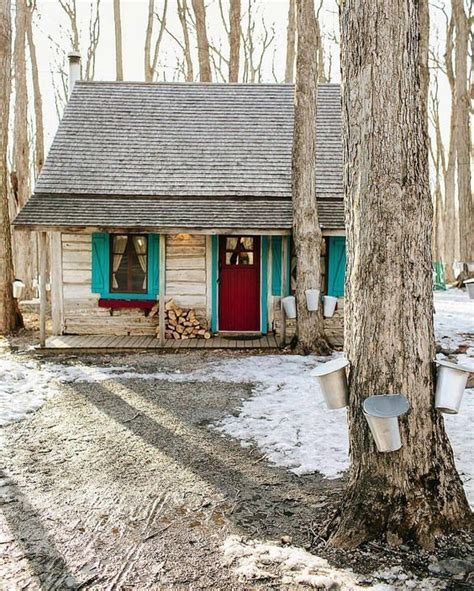 How To Build A Small Cabin In The Woods 25 best ideas about old cabins on pinterest cabins and