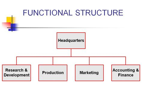 acceler8 187 simple org chart