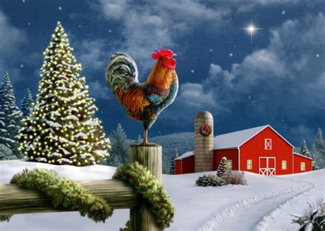 images of christmas roosters rooster on fence 18 cards 18 envelopes lpg boxed