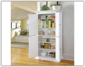Storage Ideas For Kitchen Cabinets white kitchen pantry cabinets home design ideas