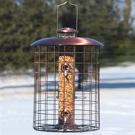shop woodlink copper squirrel resistant tube bird feeder