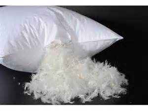 goose feather pillow bridgat