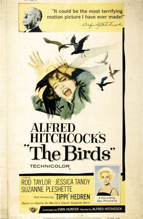 Is It All For Publicity by Vintage Publicity Posters For Quot The Birds Quot Vintage Everyday