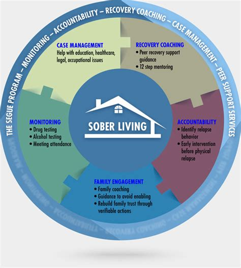 Detox Than Sober Living Than Treatment Center by Segue Addiction Aftercare Monitoring Program