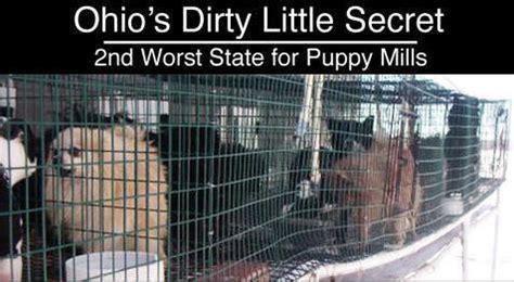 list of puppy mills in ohio breeders high volume puppy mill