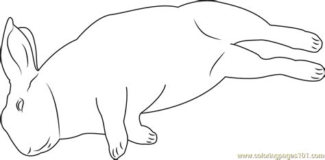 sleeping coloring page mini rex sleeping coloring page free rabbit coloring