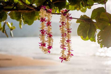 aloha from kauai the florist kauai flower life style by modernstork com