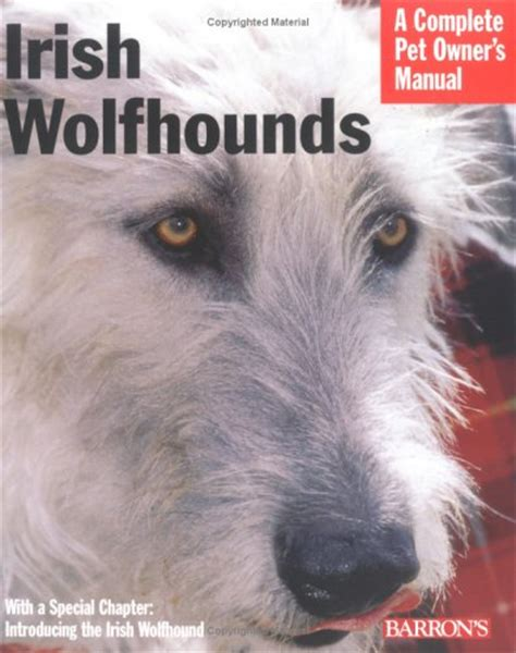 wolfhound puppies ohio wolfhound puppies ohio 300x300jpg breeds picture