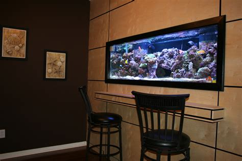 wall aquarium like hanging a picture wall mounted aquariums fpsbutest