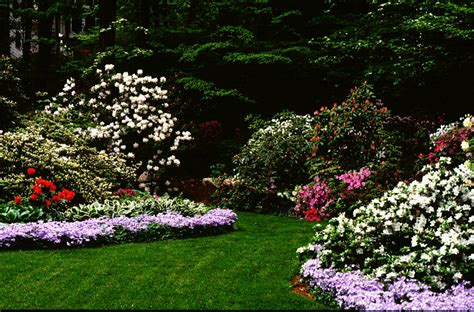landscaping pictures of backyards middle tn backyard landscaping