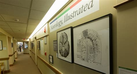 Tufts Medical Center Unveils Art Exhibit Showcasing