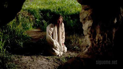 imagenes de jesus llorando por el mundo jes 250 s ora en getseman 237 predicas de julio ruiz
