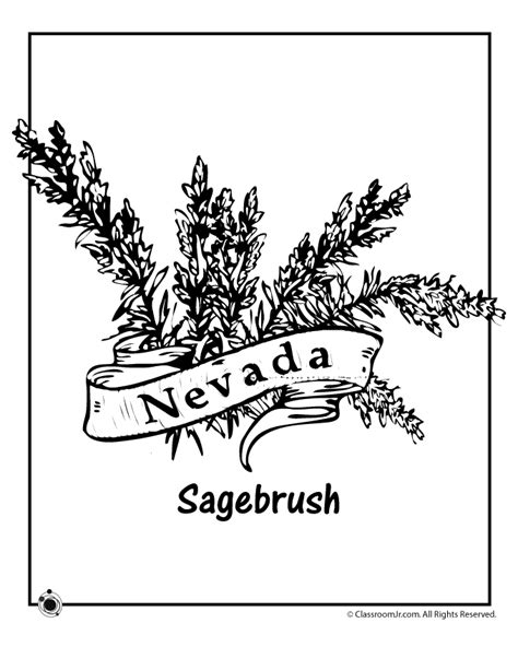 nevada map coloring page nevada state flower coloring page woo jr kids activities