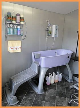 the dog house grooming salon 1000 ideas about dog grooming salons on pinterest dog