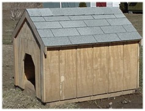 bad dog house shafer sons dog house westmoreland new york oneida county