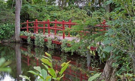 the zen garden s mystique gardening site