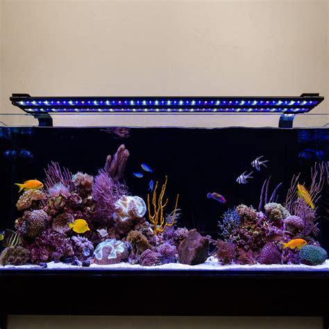 current usa aquarium light current usa orbit marine ic led reef aquarium lighting