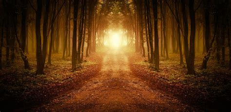 The Path 6 mistakes i ve made on the spiritual path humans are free