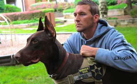 trained service dogs service i brandon mcmillan brandon mcmillan s canine minded