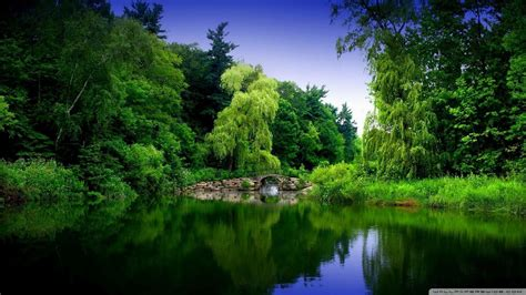 full hd nature wallpapers  images