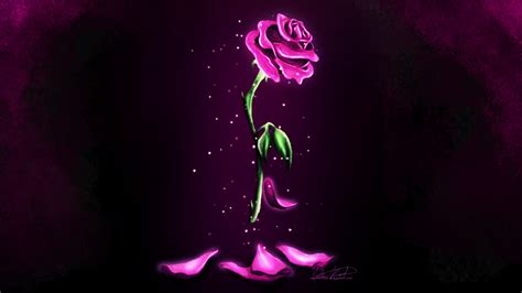rose in beauty and the beast enchanted rose wallpaper by namine1245 on deviantart