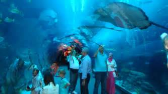 Aquarium Zoo Uae Dubai Metro City Streets Hotels Airport Travel Map